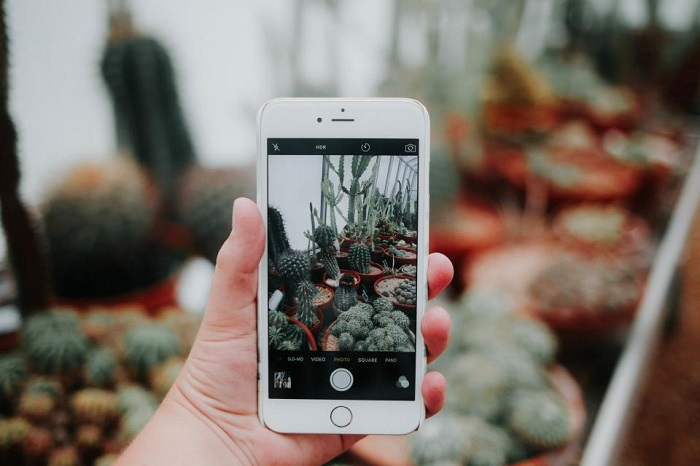 The Latest Changes to Instagram & What This Means for Photographers