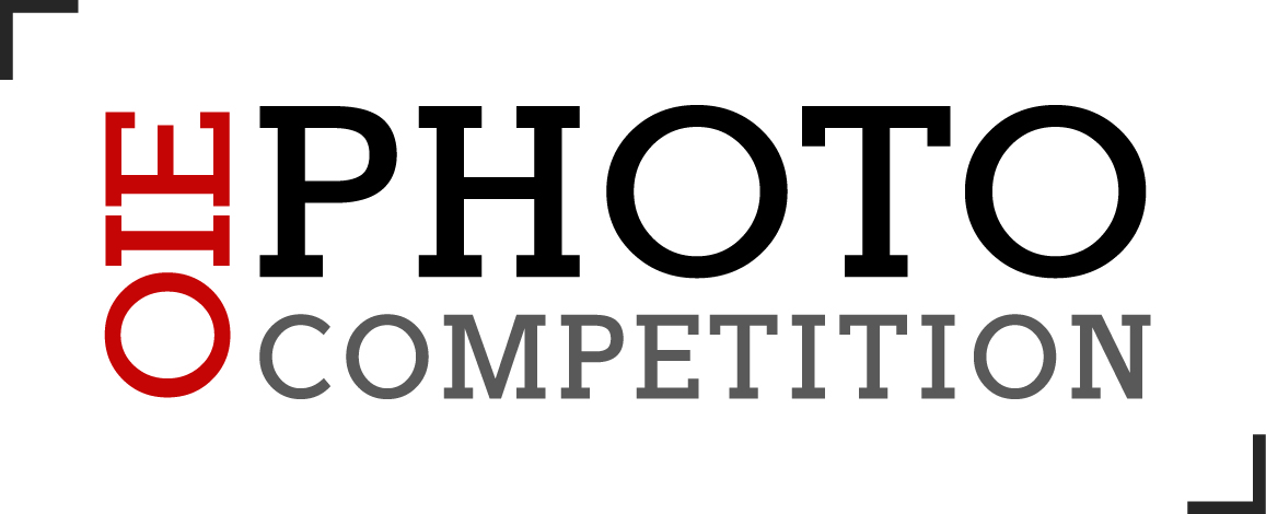 OIE Photo Competition 2017