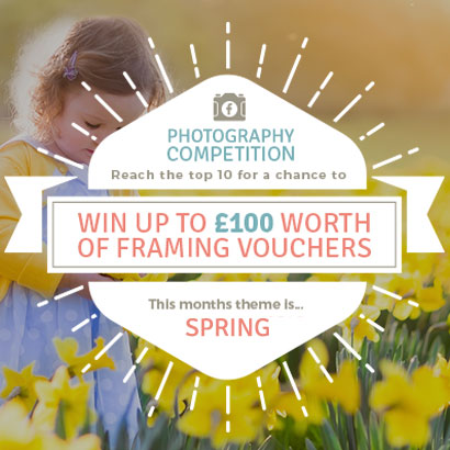 Spring Photo Competition- £100 worth of Framing Vouchers up for Grabs!