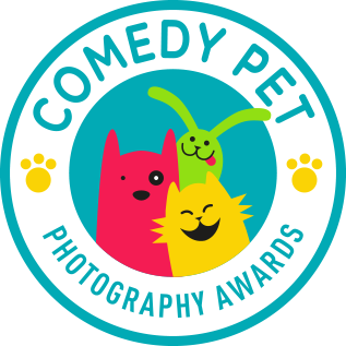 Comedy Pet Photography Awards 2017