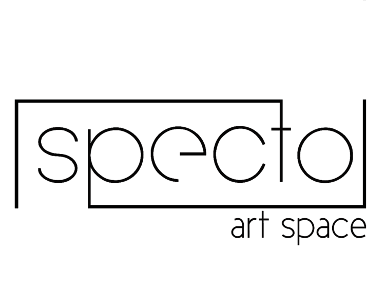 Seeking Photographers for Solo Exhibition + Curate/Juror an International Juried Show