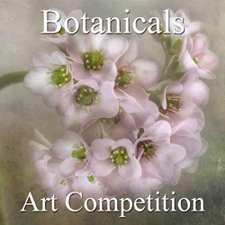 "7th Annual ""Botanical & Floral"" Art Competition"