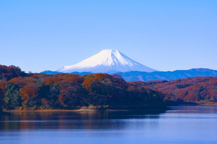 The Photographer's Guide to Visiting Japan