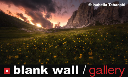 Landscapes by Blank Wall Gallery