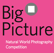 BigPicture Natural World Photography 2018 Competition
