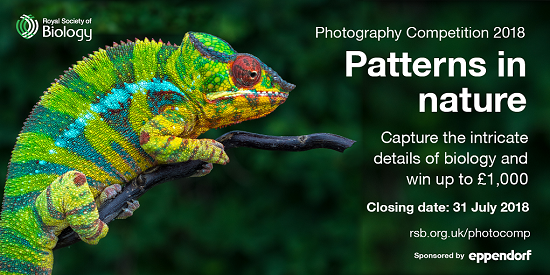 Royal Society of Biology Photography Competition 2018