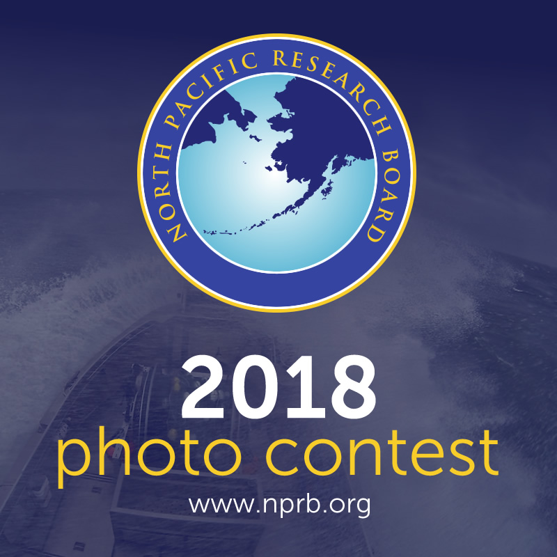 2018 North Pacific Research Board Photo Contest