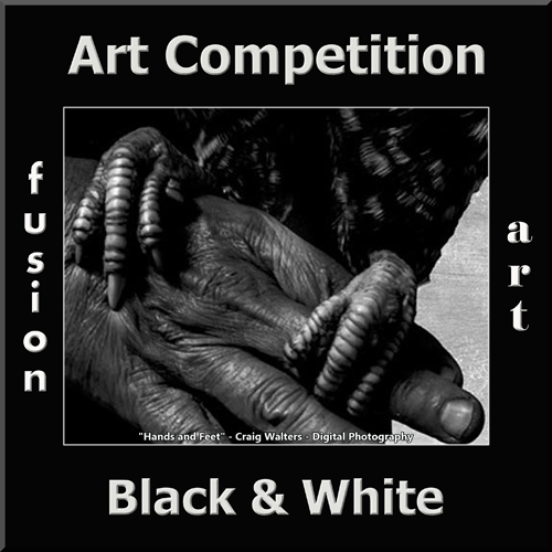 2nd Annual Black & White Art/Photo Competition