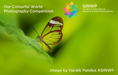 Our Colourful World Photography Competition