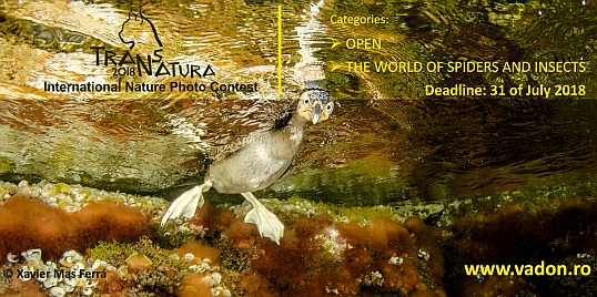 V. TransNatura International Nature Photo Contest