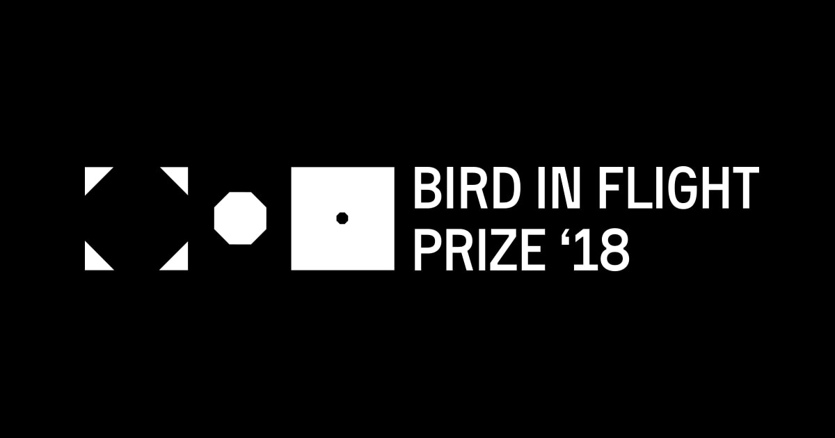 Bird in Flight Prize: Award for Unconventional Photographers