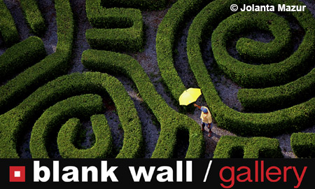 Conceptual by Blank Wall Gallery