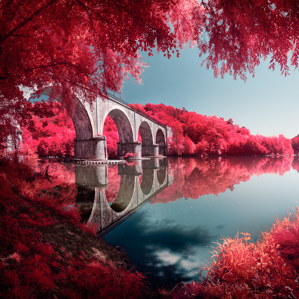 LIFE IN ANOTHER LIGHT INFRARED PHOTOGRAPHY CONTEST