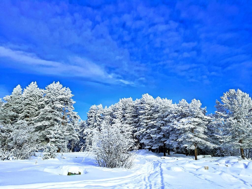Coinaphoto Photo Contest 'Winter'