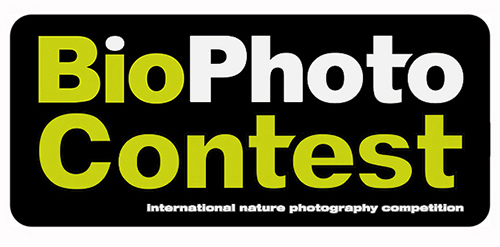 BioPhotoContest 2019