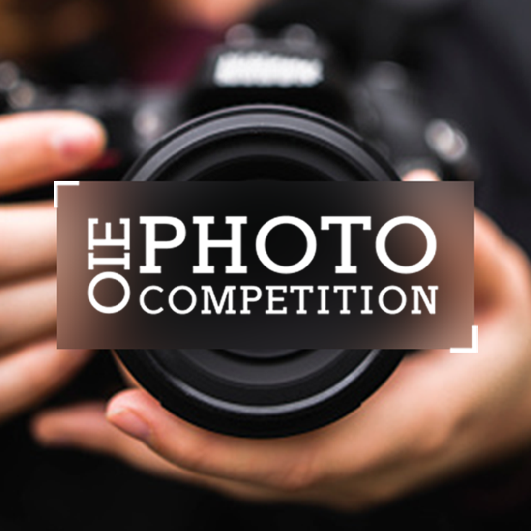 OIE Photo Competition