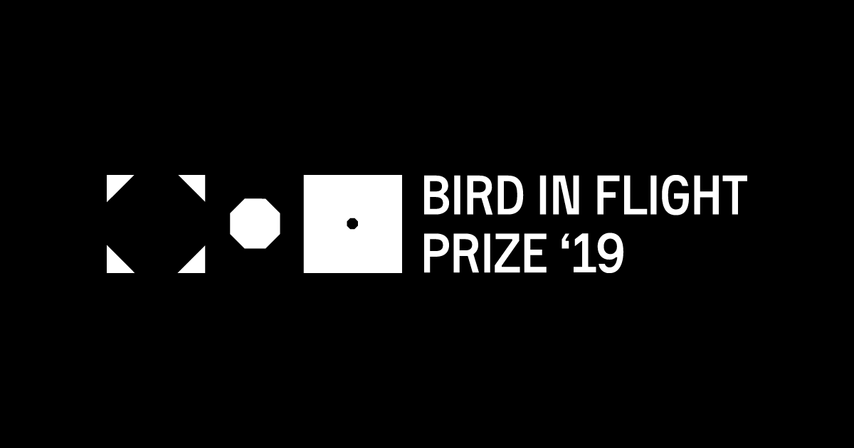 Bird in Flight Prize '19: Award for Innovative Approach to a Photograph