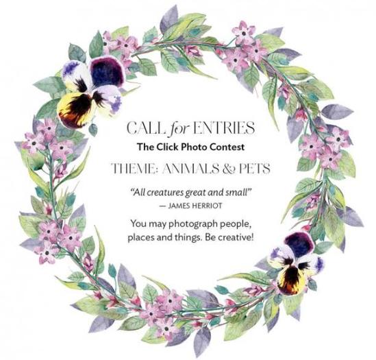 The Click Photo Contest 2019