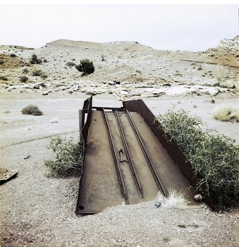 'The Environment & Social Activism' curated by Morgan Post