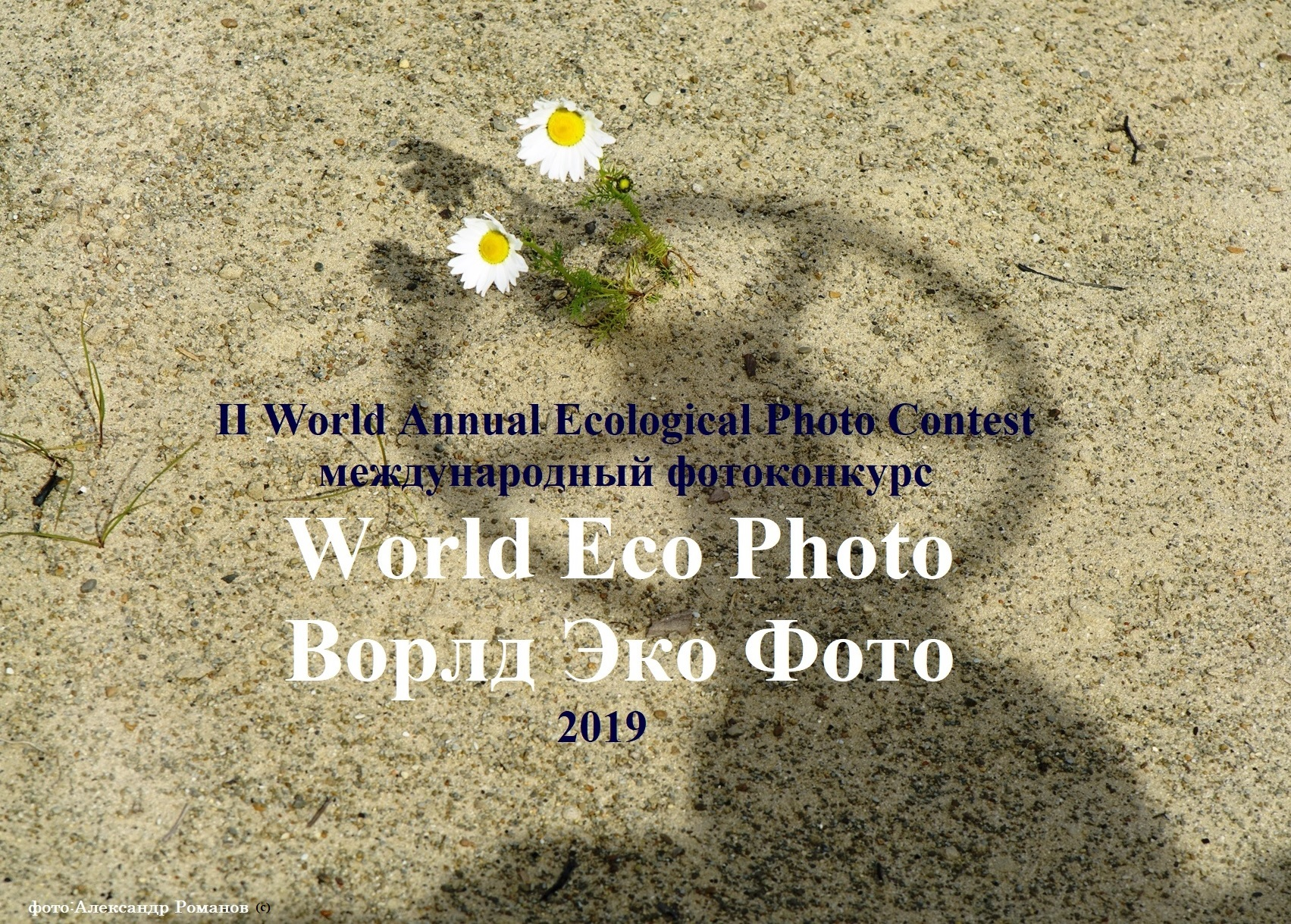 World Eco Photo 2019