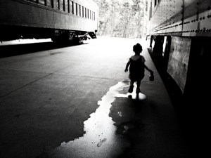 L.A. Photo Curator 'Introspective Matter' Curator: Michael Kirchoff