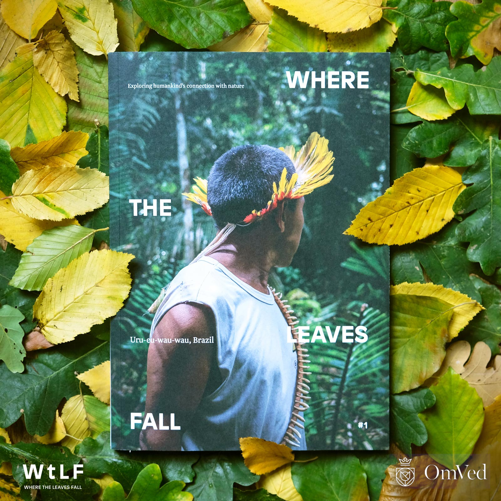 Where the Leaves Fall Magazine – Exploring our Connection with Nature – DEATH