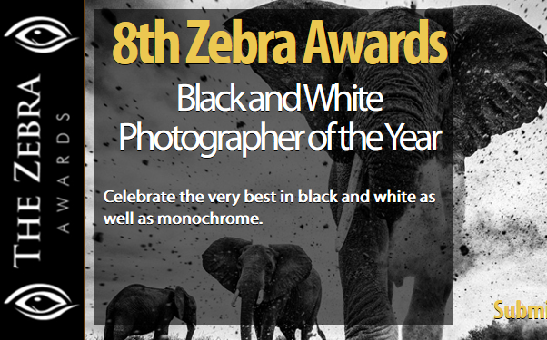 8th Zebra Awards