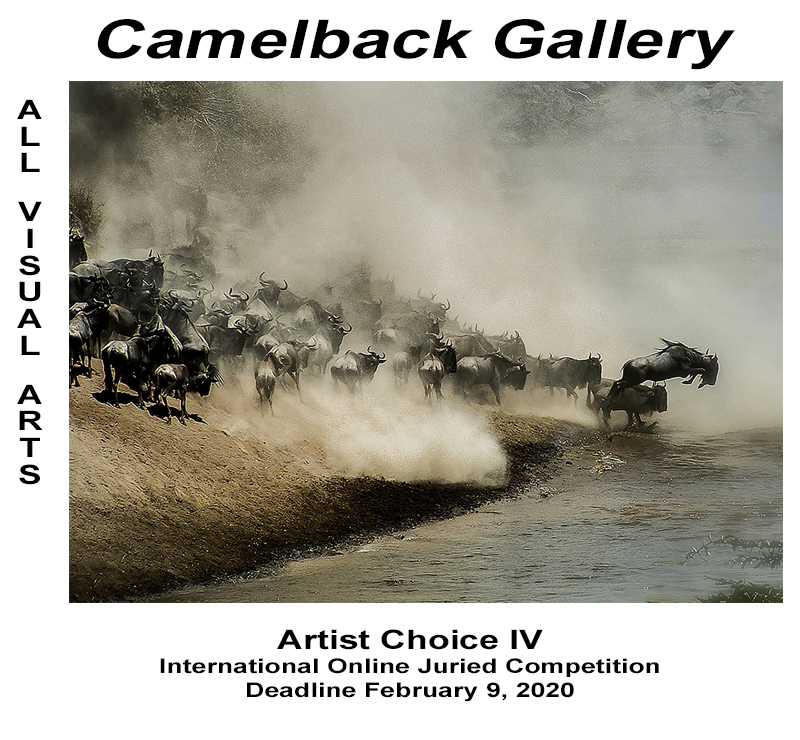 """Artist Choice IV"" Online Juried Visual Arts Competition"