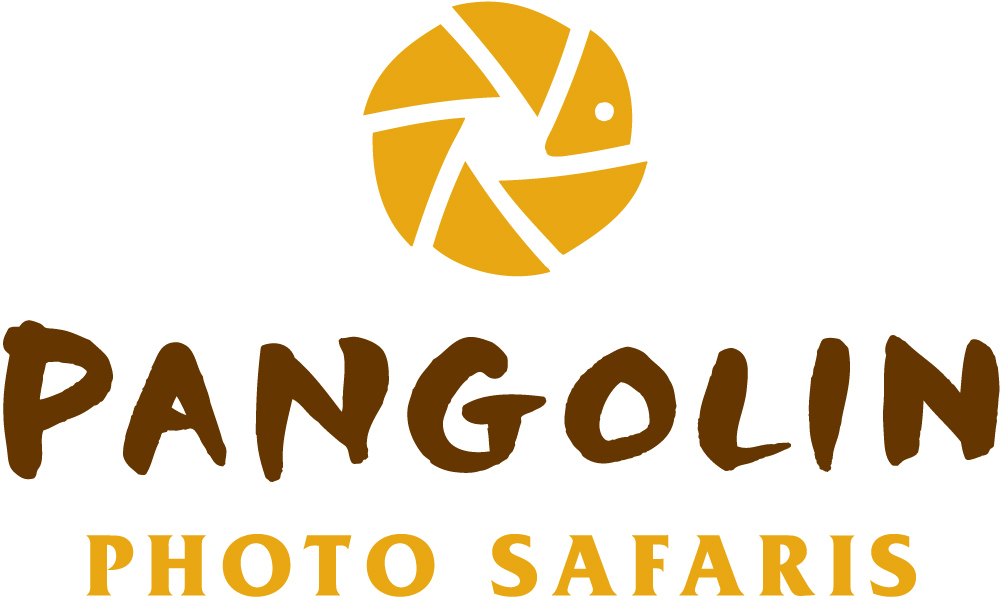 Win 1 of 8 six-day African Photo Safaris plus vouchers and many more!