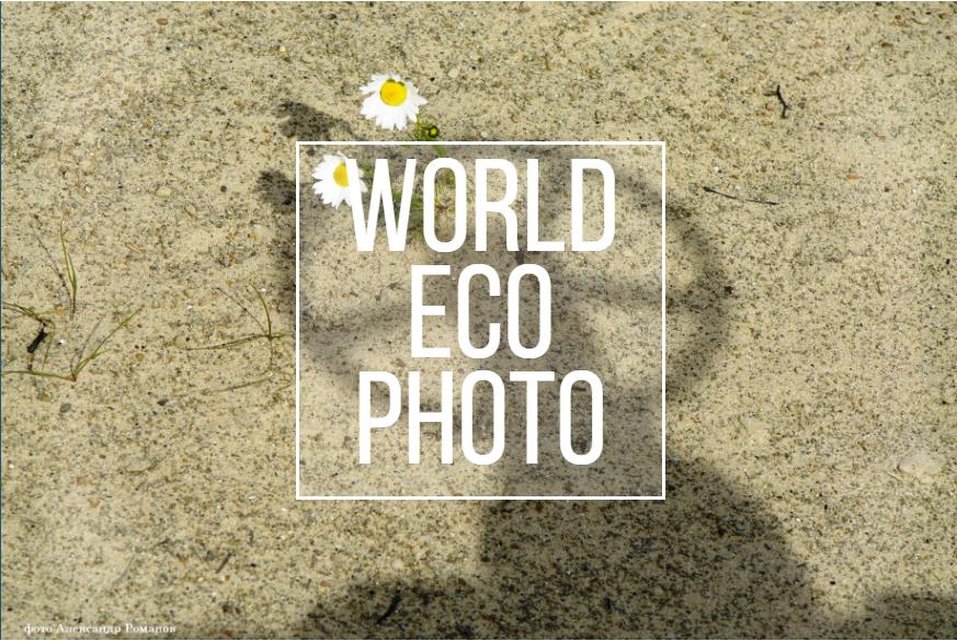 World Eco Photo
