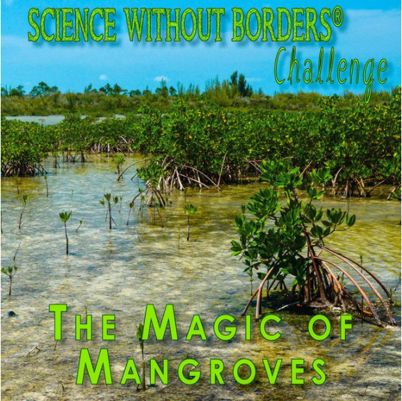 Science Without Borders Challenge