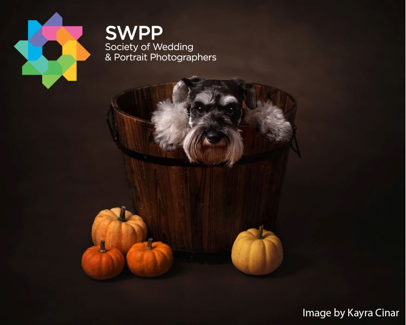 Autumnal Portraits Photography Competition