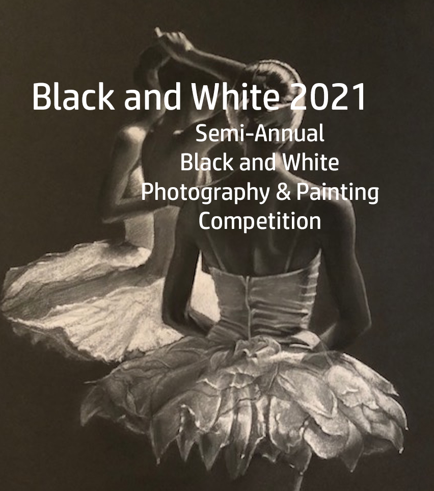 Black and White Semi-Annual Juried Photography and Painting Competition