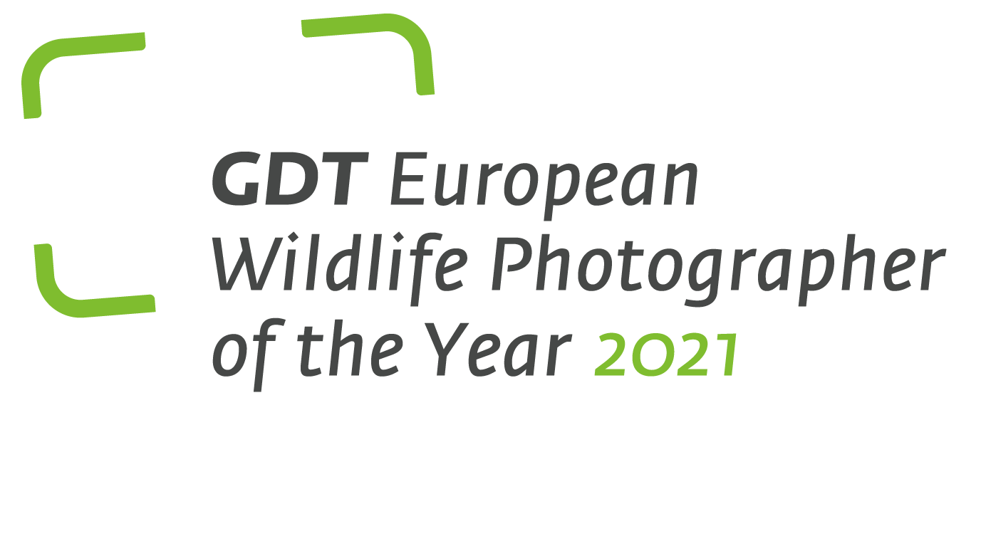 GDT European Wildlife Photographer of the Year