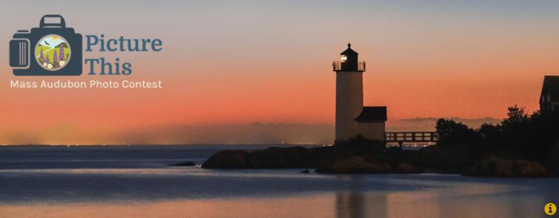 Mass Audubon's 2021 Statewide Photo Contest